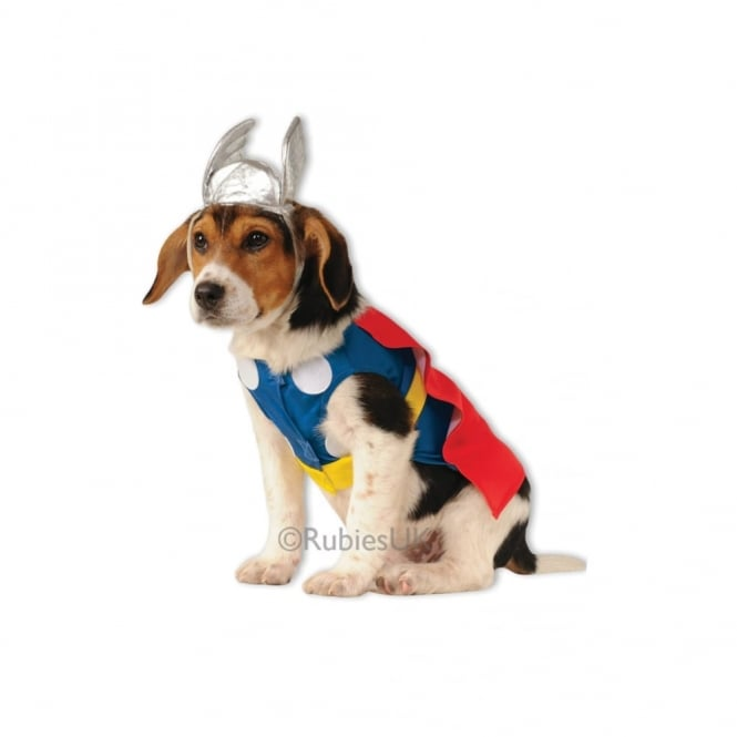 Thor Dog Costume - Pet Accessory  sc 1 st  a2z Fancy Dress & Thor Dog Costume