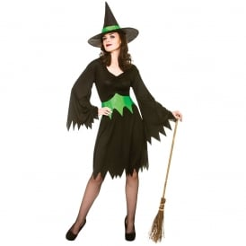 Wicked Witch - Adult Costume
